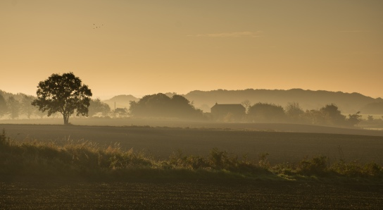 Dawn over Blackley Hurst Farm